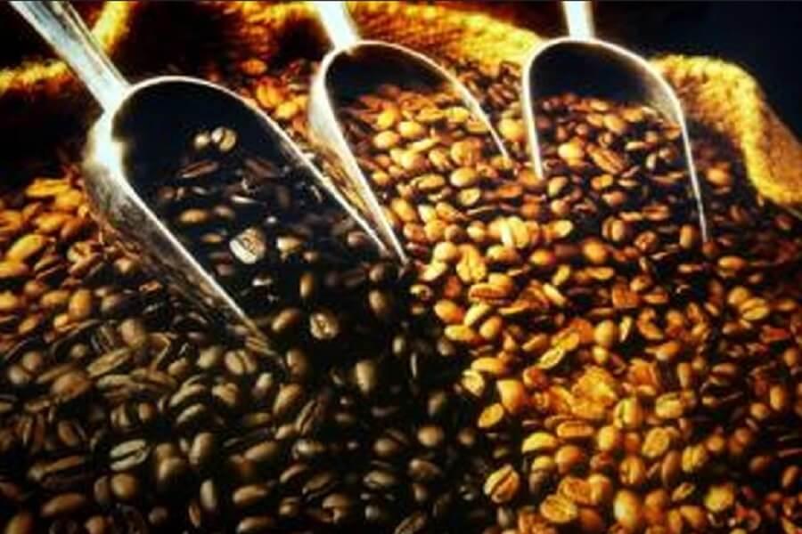 kawa z palarni kawy