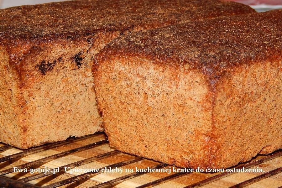Upieczone chleby na kuchennej kratce